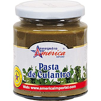 AMERICA IMPORT Pasta de culantro Frasco 205 g