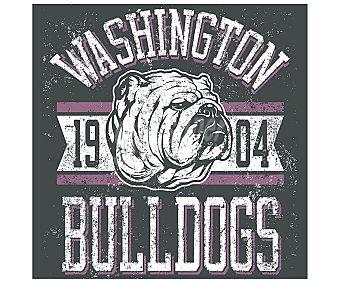 IMAGINE Cuadro de con el escudo vintage de los Washington bulldogs y dimensiones de 28x28 centímetros 1 unidad