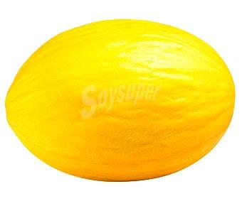 Seri Melón amarillo 2300 gramos aproximados