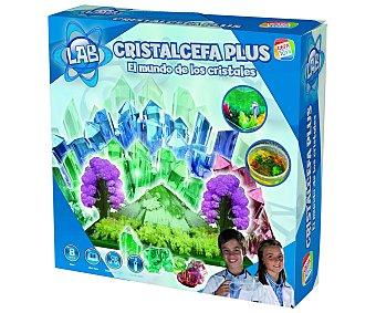 Cefa Juego científico de experimentos Cristalcefa Plus, 1 unidad