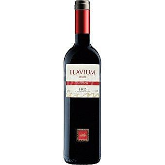Encanto Vino tinto roble mencía D.O. Bierzo  botella 75 cl