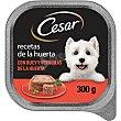 Recetas de la Huerta comida húmeda para perro con buey y verduras Tarrina 300 g Cesar