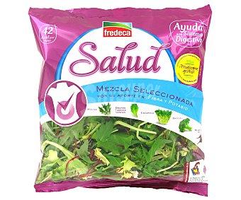 FREDECA Ensalada Salud Digestivo 130g