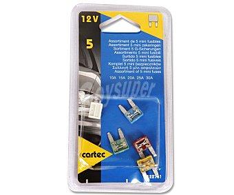 CARTEC Lote de 6 mini fusibles (10A-15A-20A-25A-30A) 1 unidad