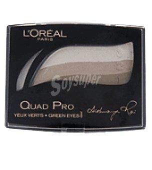 L'Oréal Sombra de ojos quad pro 319 vert dore 1 sombra de ojos