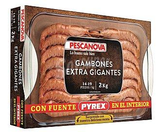 PYREX PESCANOVA Gambón extra gigante, con bandeja, 2 kilogramos