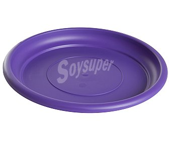 VAN Plato circular de plástico de color violeta 1 Unidad