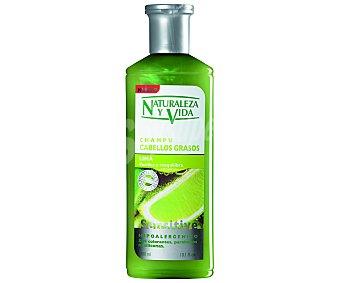 Naturaleza y Vida Champú cabello graso Bote 300 ml