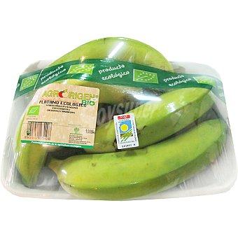 Plátanos ecológicos Bandeja 1 kg
