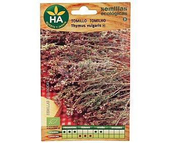 HA-Huerto y Jardín Semillas ecológicas para plantar tomillo Semillas Tomillo