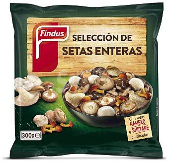 FINDUS Seleccion de setas enteras bolsa 300 g