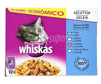 Whiskas Comida para gatos pescado, tiernos trocitos en gelatina 12 Unidades de 100 Gramos