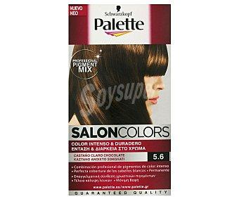 Palette Schwarzkopf Tinte Castaño Claro Nº 5.6 Salon Colors 1 Unidad