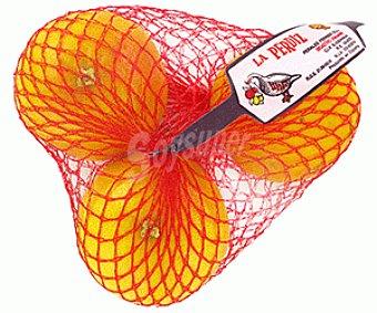 La Perdiz Pomelo Rojo 750g