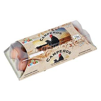 Grupo de lucas Huevos frescos clase M camperos Estuche 10 uds