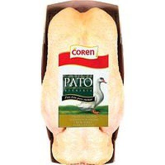 COREN 1 Roti Pato Relleno 2k