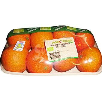 Clementinas ecológicas peso aproximado Bandeja 1,1 kg