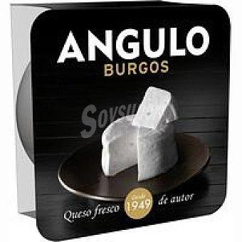 Angulo Queso mezcla Tarrina 150 g