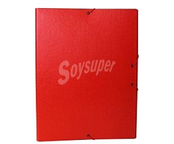 Auchan Clasificador de tamaño folio de cartón forrado con papel en color rojo plastificado, con 12 posiciones de separadores y cierre de gomas auchan 1u