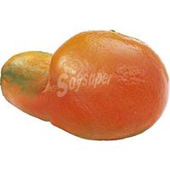 Mandarina fea 1 kg