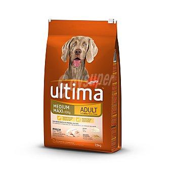 Ultima Affinity Pienso para perros adultos de raza mediana y grande de pollo, arroz y cereales integrales Bolsa 7,5 kg