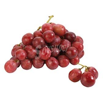 Racimo de uva roja  Racimo de 800gr aprox