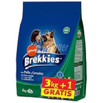 Brekkies Affinity Comida perros Exc Pollo 3+1 4 k