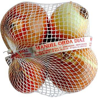 MANUEL OJEDA DIAZ Cebollas Bolsa 1 kg