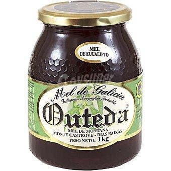 OUTEDA Miel de eucalipto gallega Tarro 1 kg
