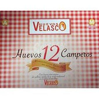 Campero Huevo Velasco 12u