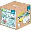 Lavavajillas gel cápsulas Eco Todo en 1 Caja 110 dosis Flopp