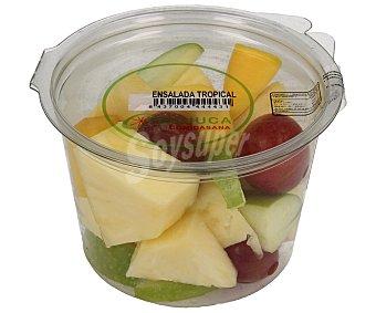 Frujuca Ensalada de frutas tropicales (piña, uva, manzana granny smith y mango 300 g