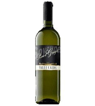 Pinot grigio Vino valle calda blanco Botella de 75 cl