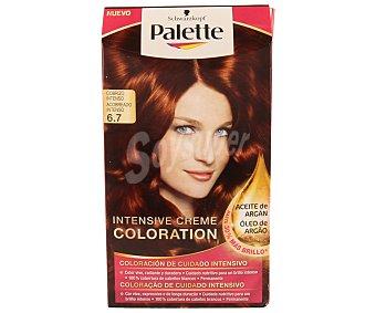 Palette Schwarzkopf Tinte Intensive Creme Coloration 6.7 Cobrizo Intenso 1 ud