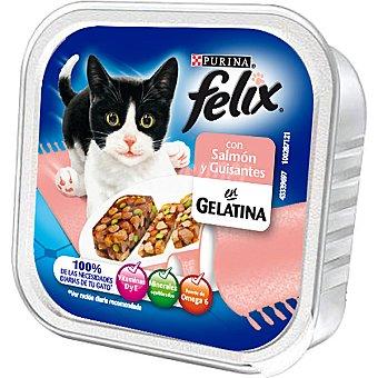 Felix Purina Salmón ahumado con guisantes Tarrina 100 g