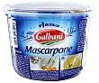 mascarpone envase 500 g Galbani