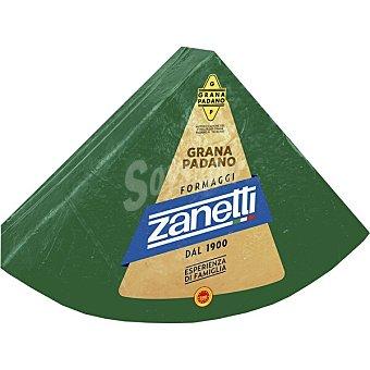 Zanetti Queso grana padano 100 gramos