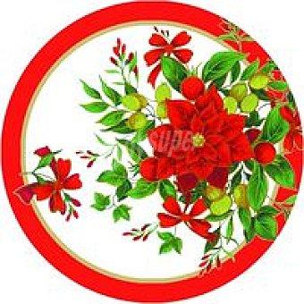 CM 8 Platos 23 Poinsettia