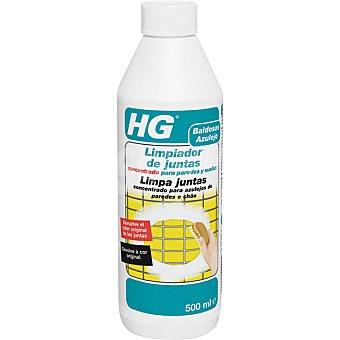HG limpiador de juntas concentrado para paredes y suelos botella 500 ml