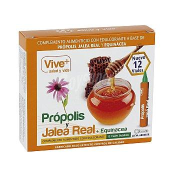 Vive+ Propolis/jalea Real + Equinacea vive plus 120 g