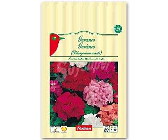 Auchan Semillas para plantar geraneo de diferentes variedades 0.01 Gramos.