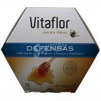 VITAFLOR Jalea defensas Caja 20 viales