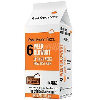 FREE FROM FRIZZ Alisador con keratina de cabello grueso hasta 6 semanas sin pelo encrespado caja 1 unidad una aplicación Caja 1 unidad