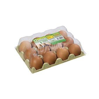 Huevos grandes L 12 unidades
