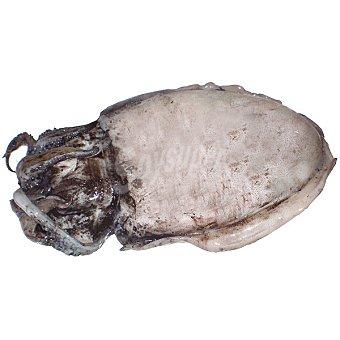 Sepia sucia de Bahía Al peso 1 kg