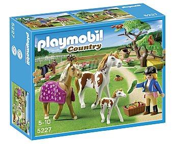 Playmobil Playset escenario de juego Cuidadora con caballo, incluye figura, caballos y accesorios, modelo 5227 Country 1 unidad
