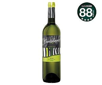 CUATRO RAYAS vino blanco verdejo D.O. Rueda ecológico botella 75 cl