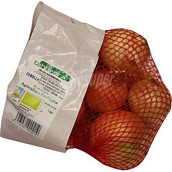 Tabuenca Cebolla de agricultura ecológica Malla 1 kg