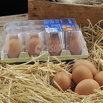 Carrefour Huevos medianos M 12 unidades