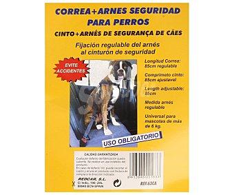 TROPHY Correa regulable de 85 centímetros más arnés de tamaño universal para mascotas de más de 6 kilos, siendo la fijación del arnés regulable y compatible con la conexión del cinturón de seguridad 1 unidad